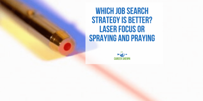Job Search Strategy Is Better_ Laser Focus or Spraying and Praying