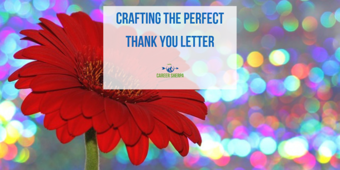 Crafting the Perfect Thank You Letter