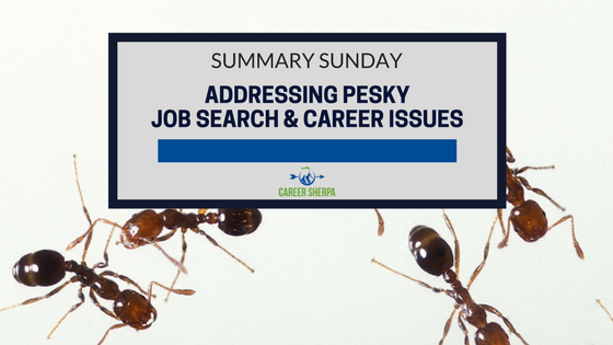 job search and career issue