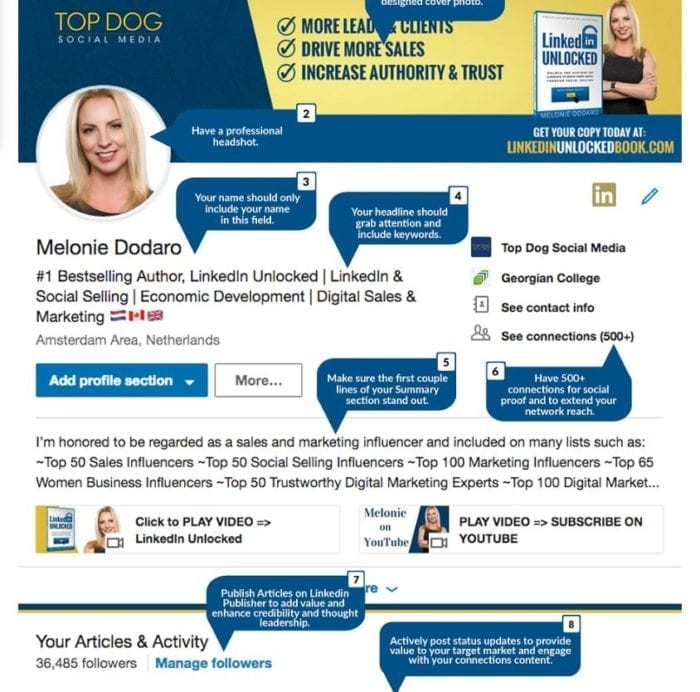 LinkedIn profile Melonie Dodaro 2018