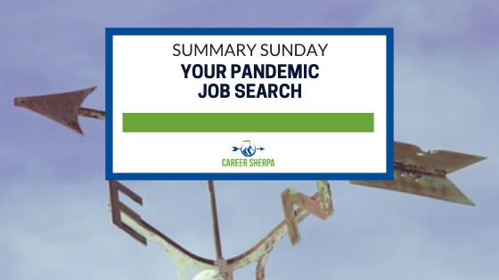 Summary Sunday Your Pandemic Job Search