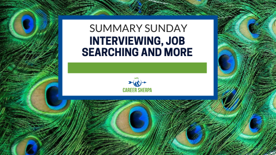 Summary Sunday interviewing Job searching and more